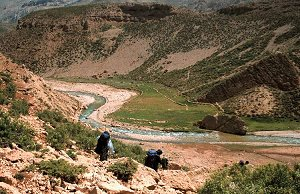 River Valley in the Zagros Mountains